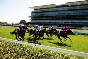 Melbourne Cup Day at Royal Randwick